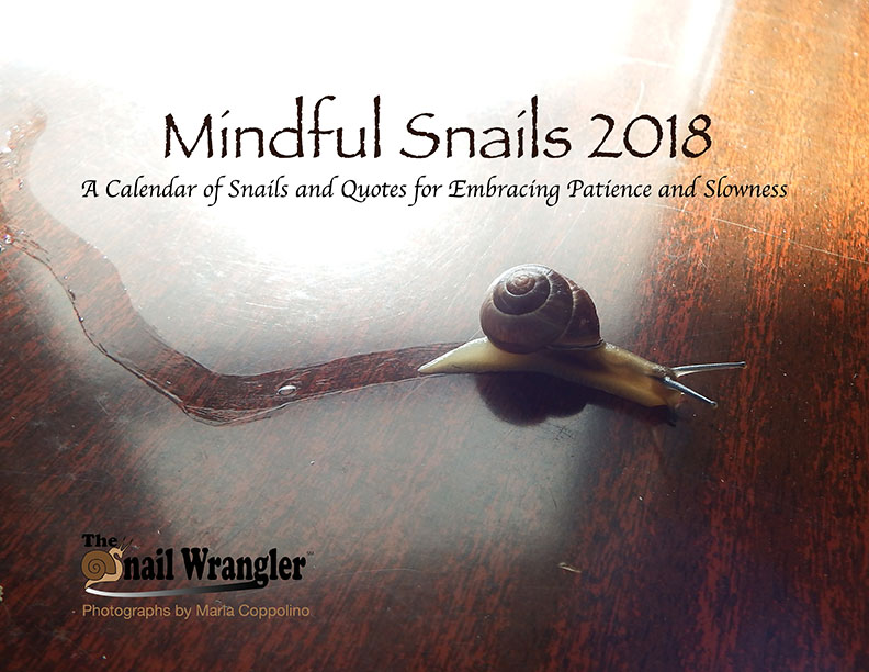 00_mindful-snails_cover